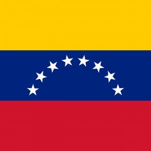 Médicos luso-venezuelanos vão integrar Comunidade Médica de Língua Portuguesa